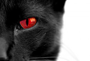 black_cat_with_red_eyes_by_onlyangel55.jpg
